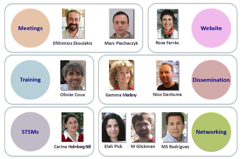 task_coordinators